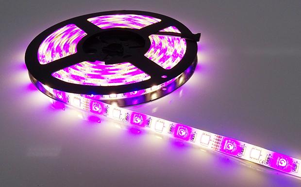 Bandeau de LED RGBW cassis et blanc