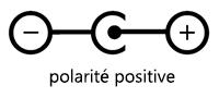 Polarité positive