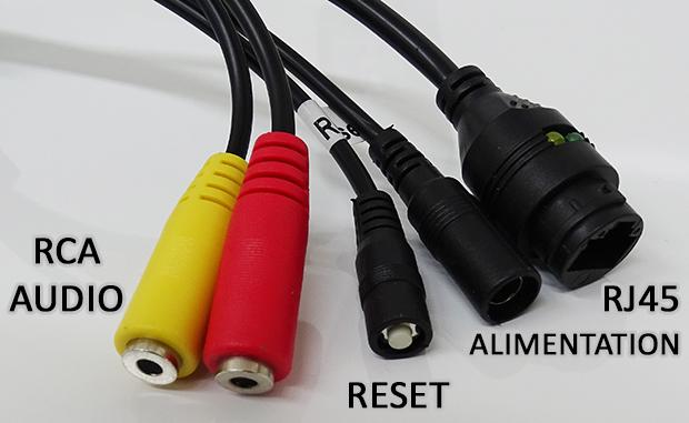 Caméra IP Orno : connectique