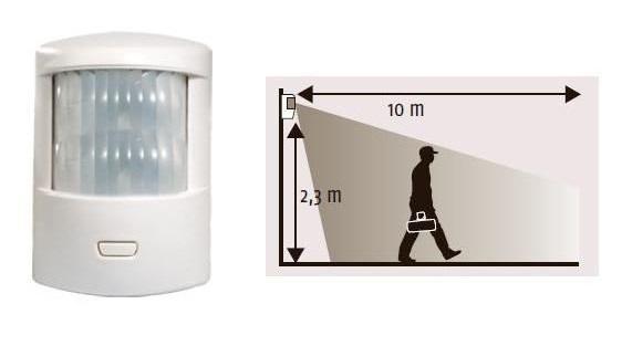 Notre guide sur les détecteurs de mouvement : IR, MW et US