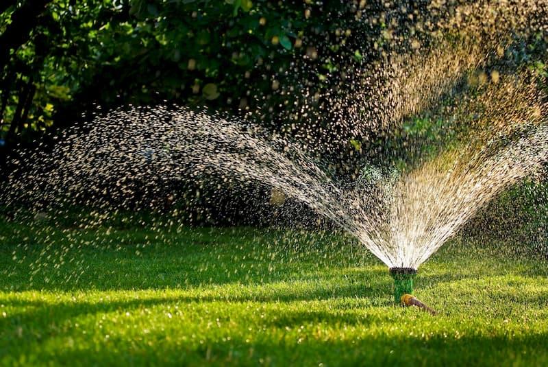 Jardin de Repina/Shutterstock