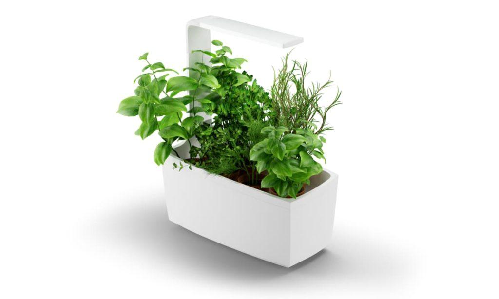 Tregen Smart Garden
