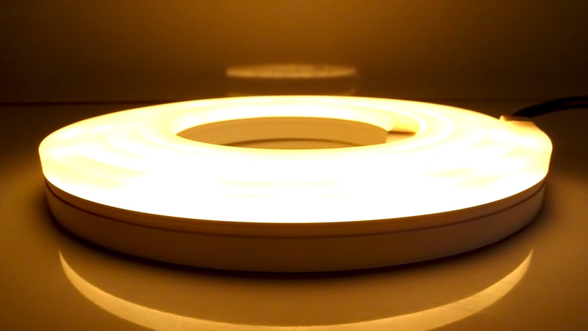 Lightstrip Outdoor, le ruban LED pour l'extérieur de Philips Hue