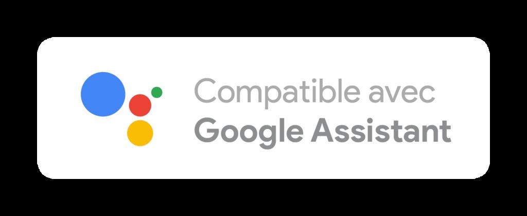 Compatible Google Assistant