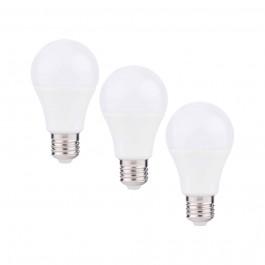 Lot de 3 ampoules led 10W blanc naturel - FamilyLed